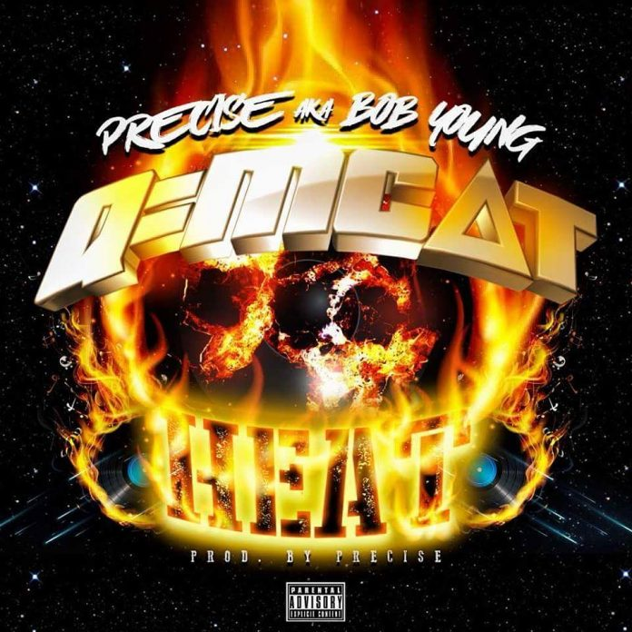 Precise aka bob young - Cradle to the Grave