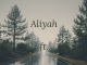 Aliyah ft Benito - Let you in my world