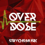 Strych9 Musik - Overdose