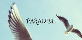 FAYBLE - Paradise