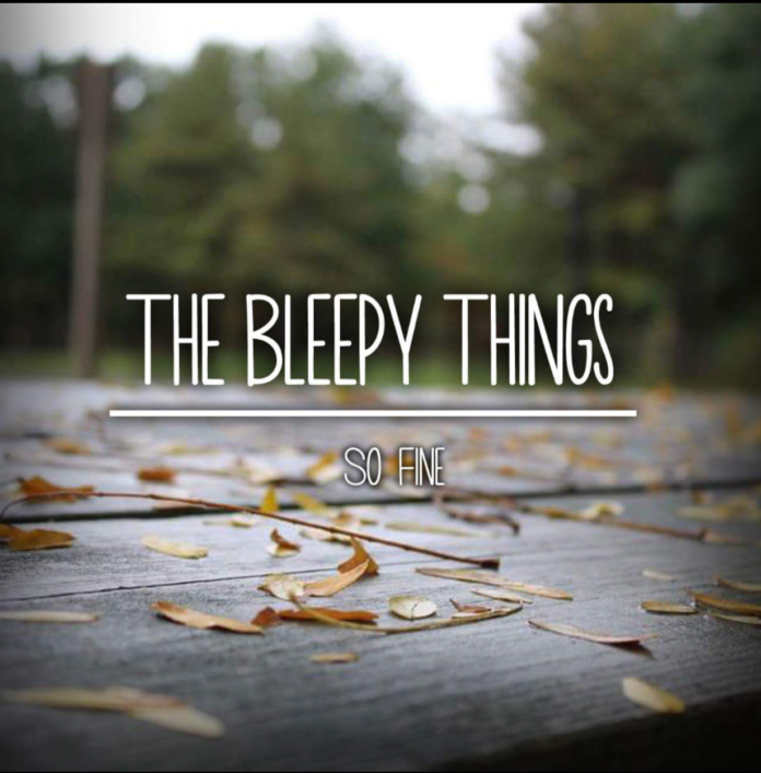 The Bleepy Things - So Fine