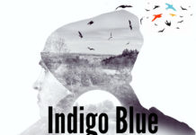 Indigo Blue - Bird of Paradise