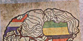 Rayvon Owens - Neuro Narrative