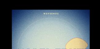 Waveendz - Angel Fruit