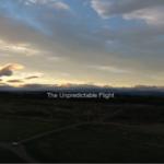 Tim Maclennan - The Unpredictable Flight