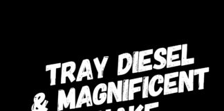 Tray Diesel & Magnificent - Shake That A*%