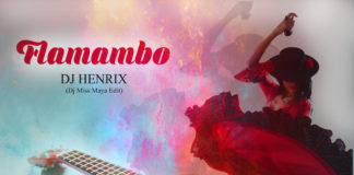 DJ Henrix - Flamambo
