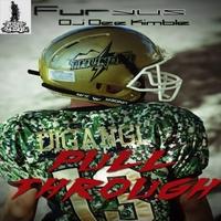 Furyus featuring DJ Dee Kimble - Pull Through