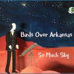 Birds Over Arkansas - So Much Sky