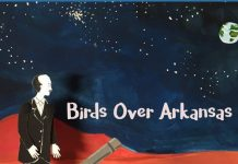 Birds Over Arkansas - So Much Sky