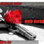 Similac Baby - Red Rose