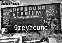 Joshua Francis - Greyhound