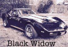ROCKQ - Black Widow