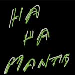 Ha Ha Mantis - Introducing Ha Ha Mantis