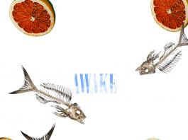 Wayne Walker - Awake