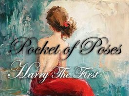 Harry the First - Pocket of Poses (Prod. spencertyto)