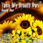 Sandy Star - Take My Breath Away