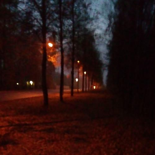 Petri Haapa - Illan Valot