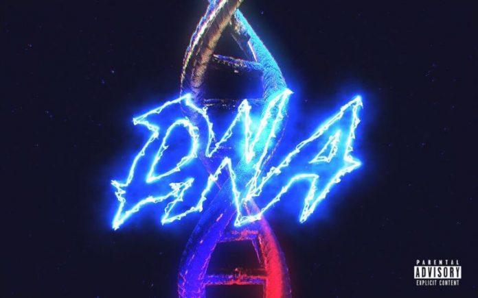 Jaypups - DNA