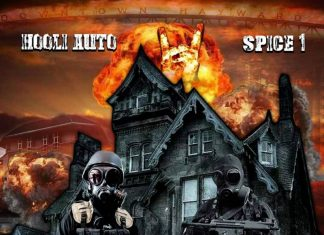 Hooli Auto & Spice 1 - The Itty Bitty City