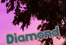 Bagger Boy - Diamond