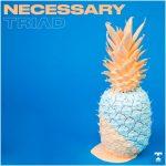 TRIVD - Necessary