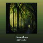 Dj Dcuellar - Never Gone