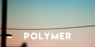 Polymer - Believers