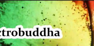 Electrobuddha - Keep Dreamin'