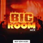 Trovie - Best Big Room House Mix 2020