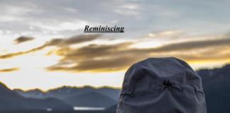 ProfitGrace - Reminiscing
