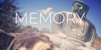 3Gunas9 - Memory