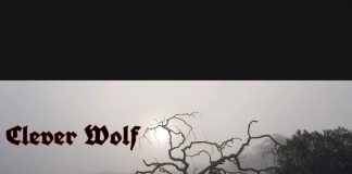 Clever Wolf - Anchor