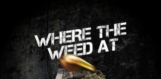 SE1V1EN ft CHRIS TIJERA - Where the Weed At