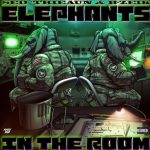 Sed'Trieaun - Elephants In The Room (feat. B-Zeik)