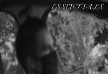 Sxurce - Essentials