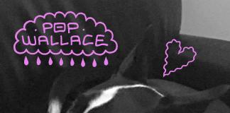 Pop Wallace - Good Boy