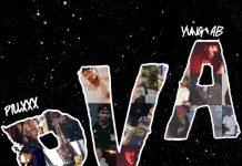 PVA - Lou Will