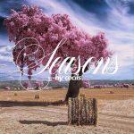 Cecils - Seasons