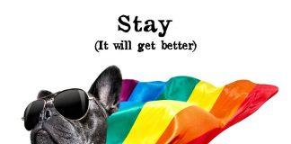 bonsche - Stay