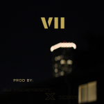 DJ Prosperity - VII