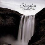 Cavendish Tree - Skógafoss